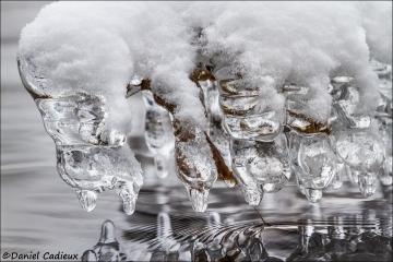 Ice_1302-13