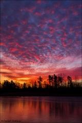 Sunrise_Petrie_Island_3926-15