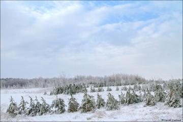 Winter_Giroux_Rd_1861-15