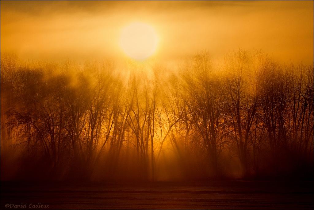 Petrie Island Sunrise