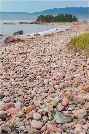 Ingonish, Nova Scotia_0378-14