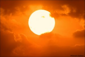 Sunset_5982-16