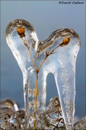 Ice_0367-13