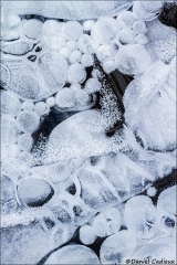 Ice_1714-15