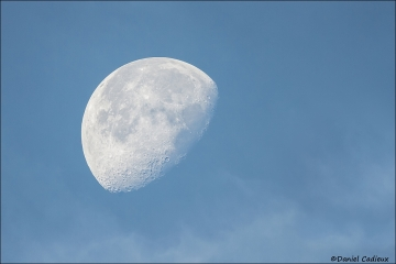 Moon_6978-13