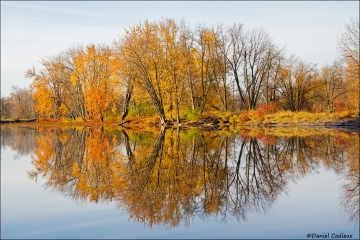 Petrie_Island_Autumn_Scene_0300-15