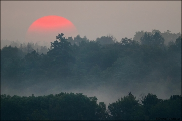 Sunrise_Petrie_Island_5339-17