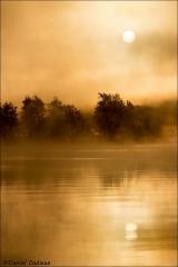 Sunrise_Petrie_Island_7080-17
